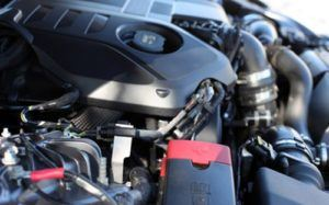Marderbisse in einem Motorraum erkennen und vermeiden